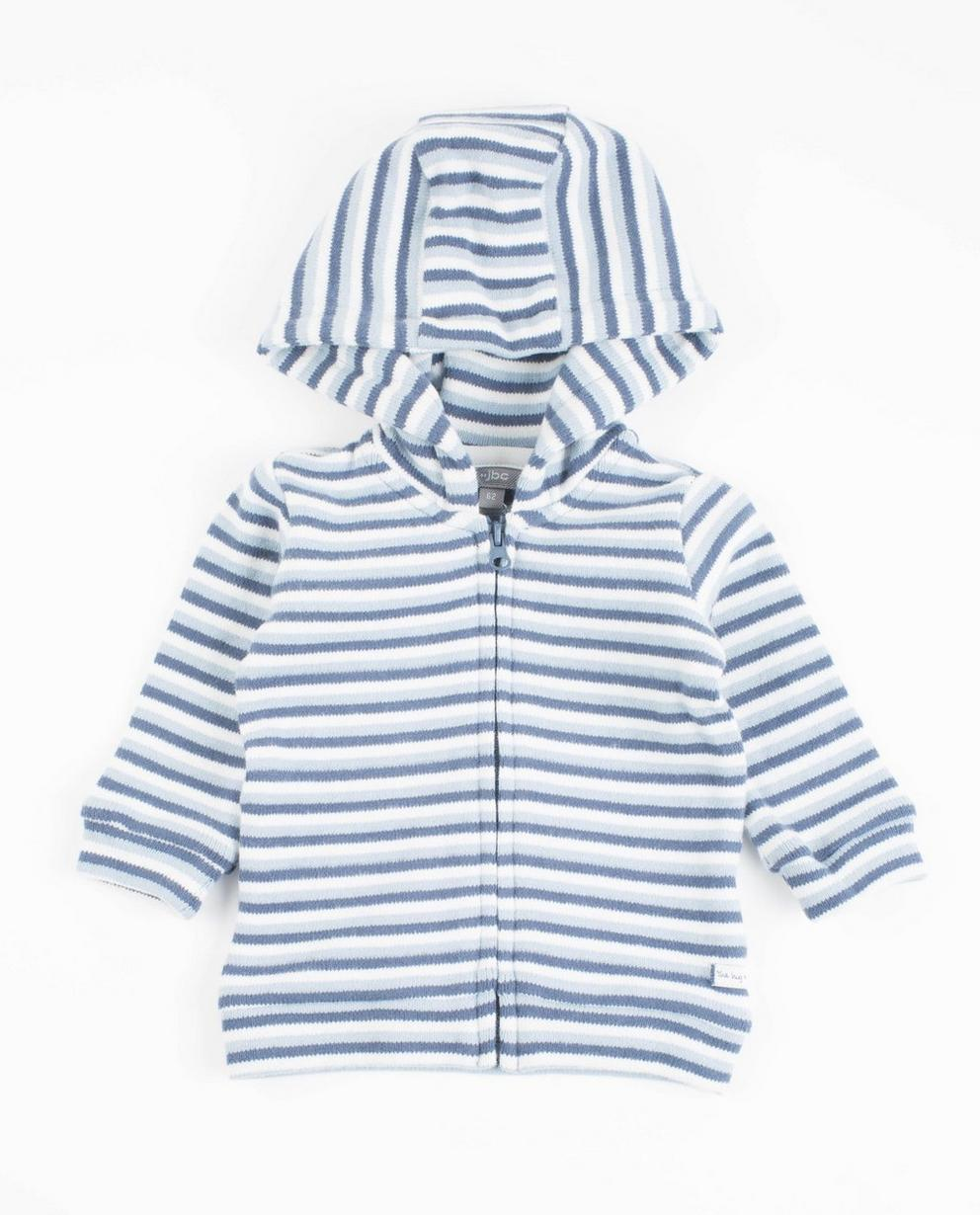Gestreifte Jacke Kapuze - in Blau-Weiß - Newborn